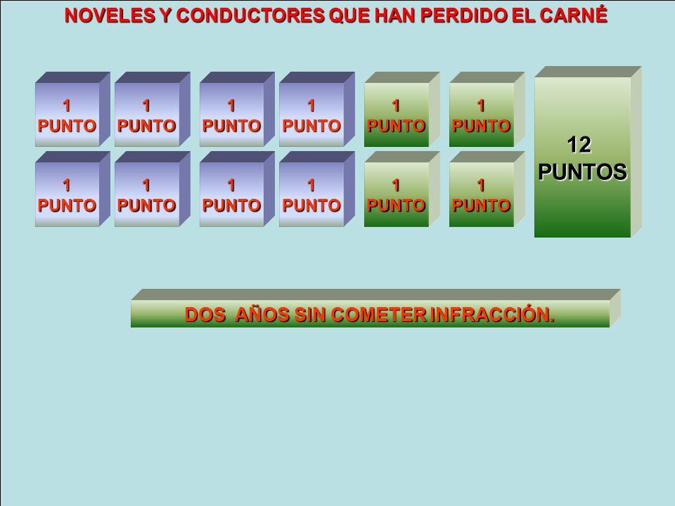 08 PUNTOS 12 PUNTOS NOVELES Y CONDUCTORES QUE HAN PERDIDO EL CARNÉ
