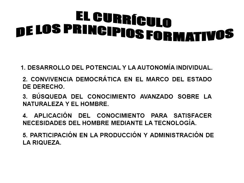 DE LOS PRINCIPIOS FORMATIVOS