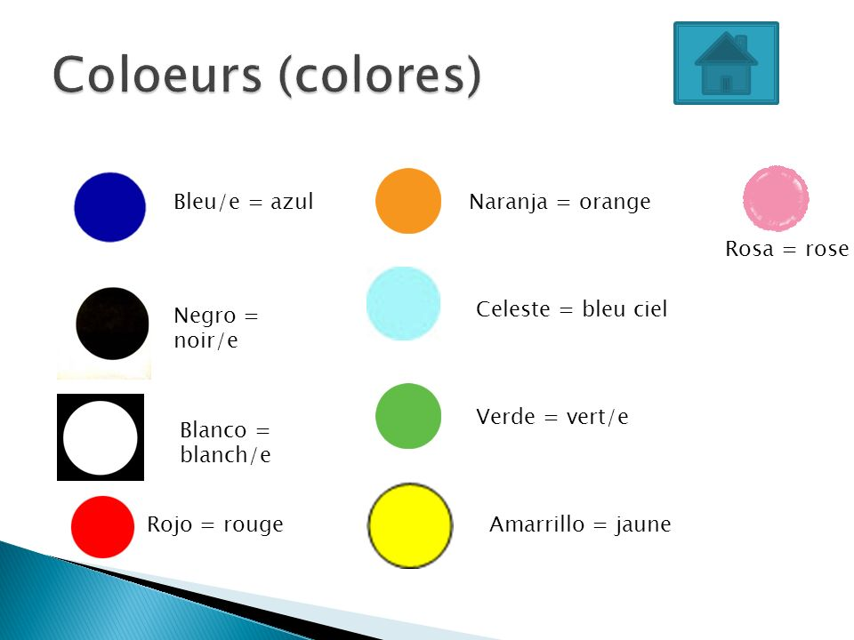 Coloeurs (colores) Bleu/e = azul Naranja = orange Rosa = rose