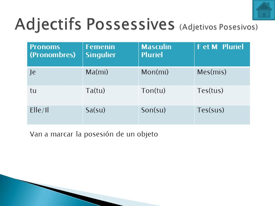 Adjectifs Possessives (Adjetivos Posesivos)