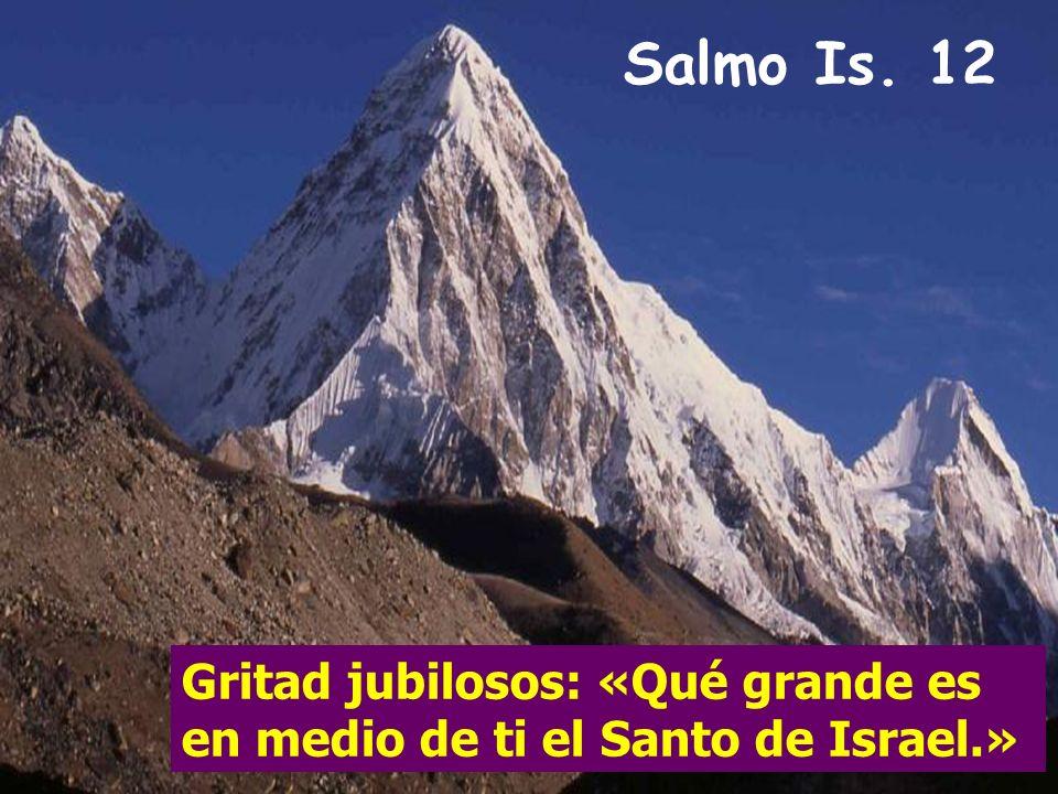 Salmo Is. 12 Gritad jubilosos: «Qué grande es en medio de ti el Santo de Israel.»