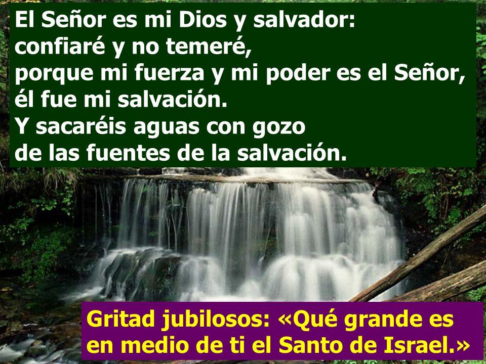 El Señor es mi Dios y salvador: confiaré y no temeré, porque mi fuerza y mi poder es el Señor, él fue mi salvación. Y sacaréis aguas con gozo de las fuentes de la salvación.