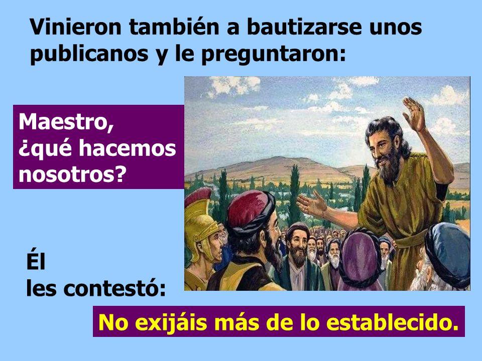 Vinieron también a bautizarse unos publicanos y le preguntaron: