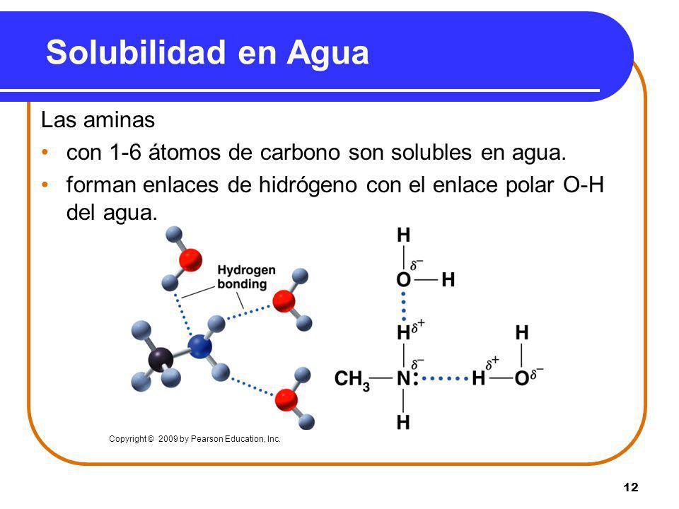 Solubilidad en Agua Las aminas