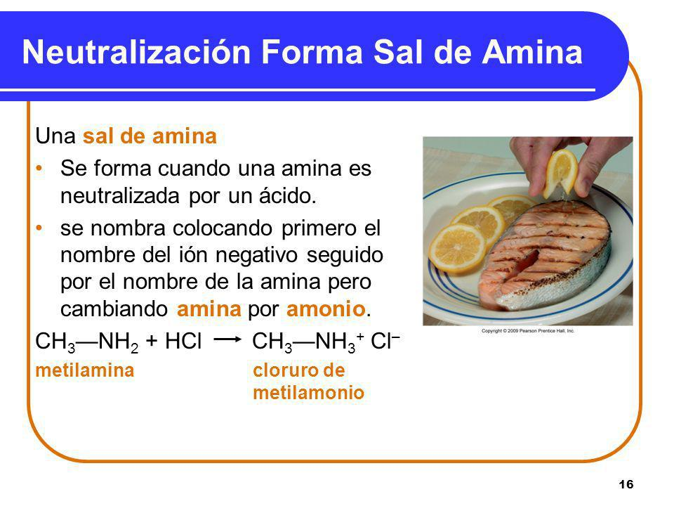 Neutralización Forma Sal de Amina