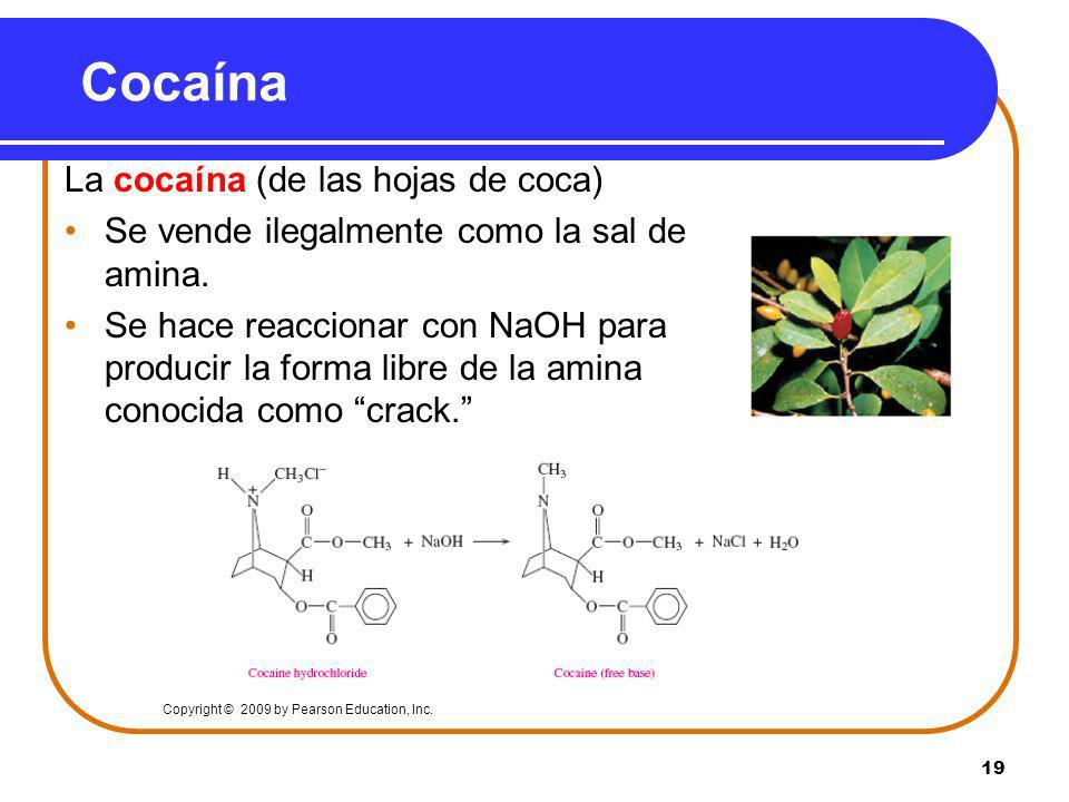 Cocaína La cocaína (de las hojas de coca)