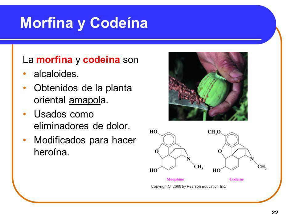 Morfina y Codeína La morfina y codeina son alcaloides.
