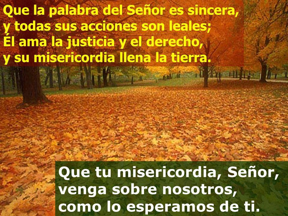 Que la palabra del Señor es sincera, y todas sus acciones son leales; Él ama la justicia y el derecho, y su misericordia llena la tierra.