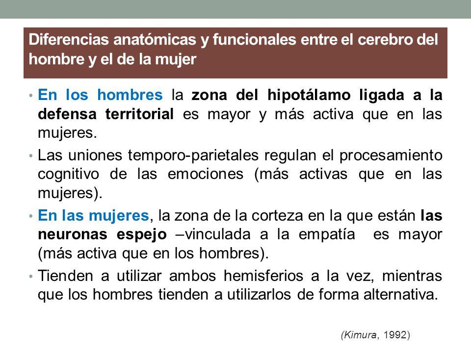 Diferencias anatómicas y funcionales entre el cerebro del hombre y el de la mujer