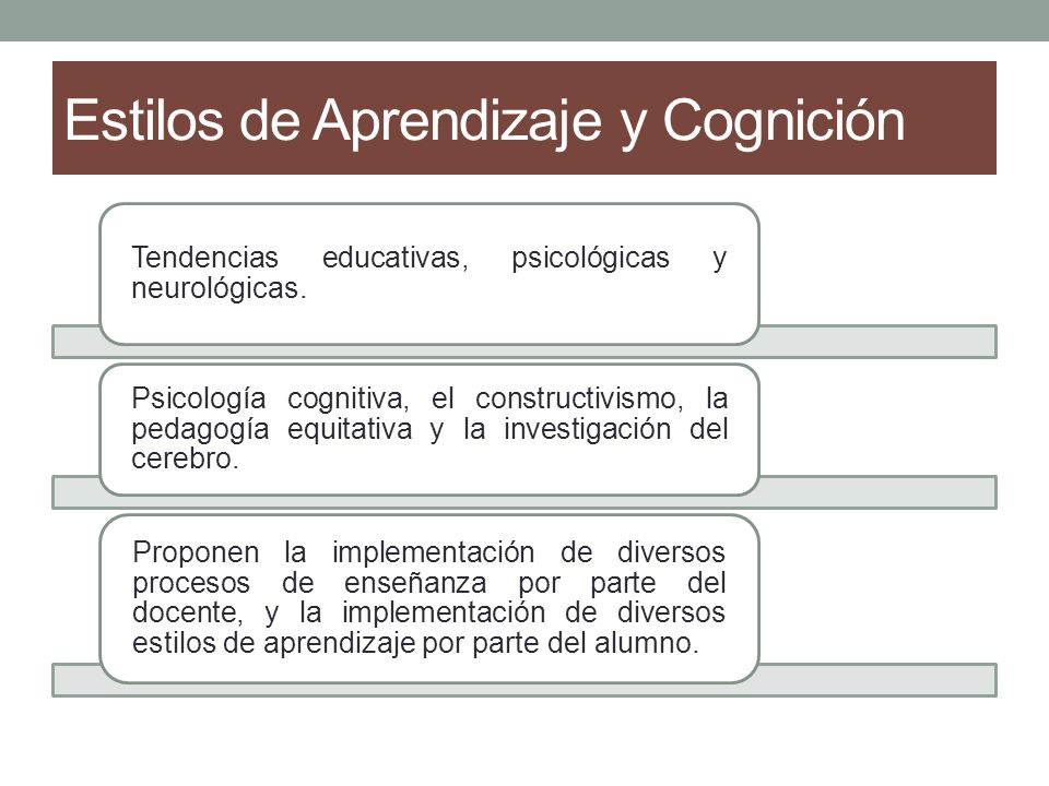 Estilos de Aprendizaje y Cognición