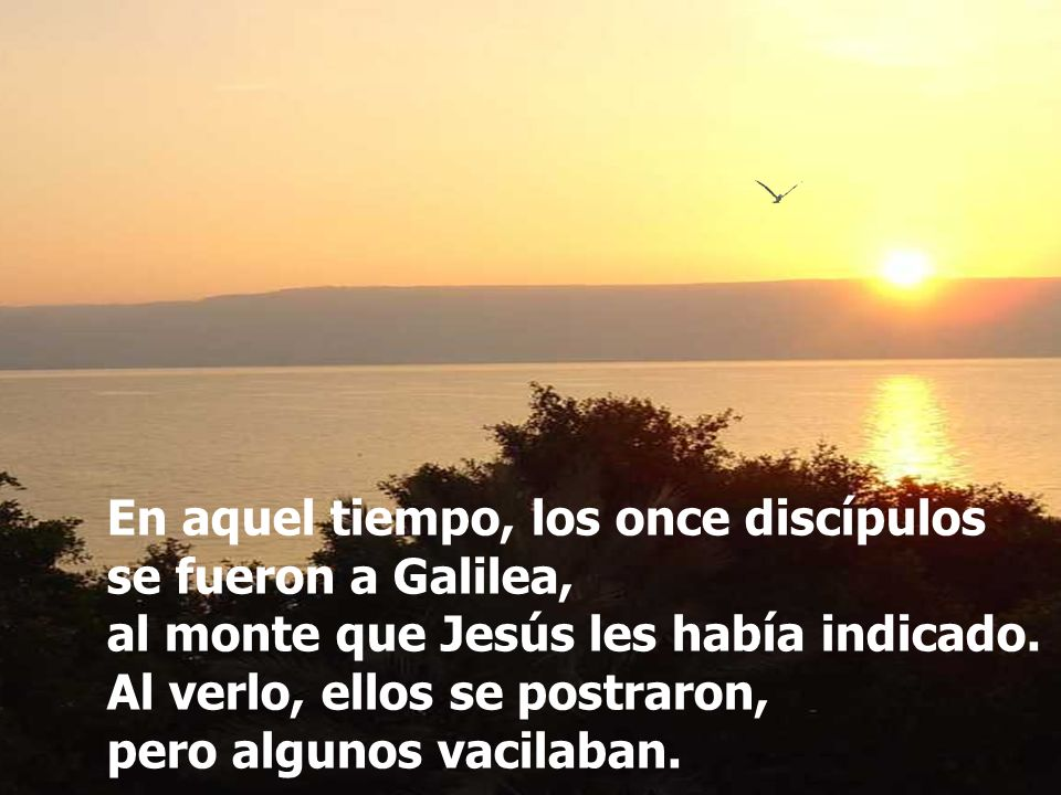 En aquel tiempo, los once discípulos se fueron a Galilea, al monte que Jesús les había indicado.
