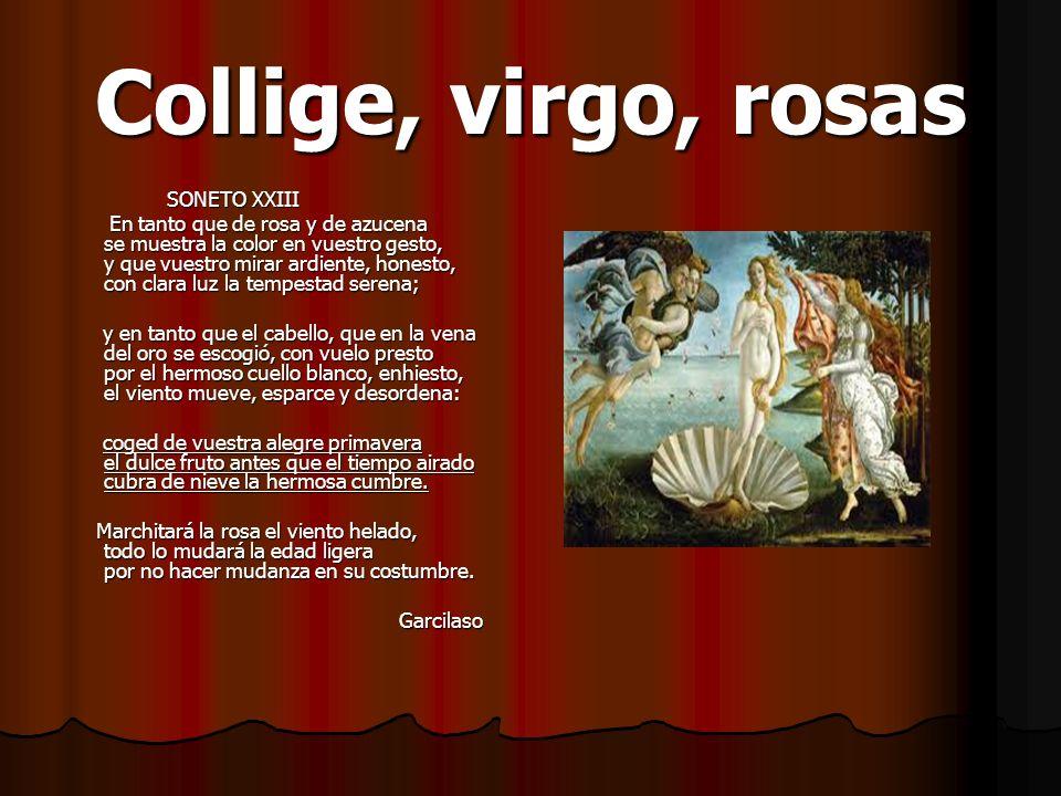 Collige, virgo, rosas SONETO XXIII