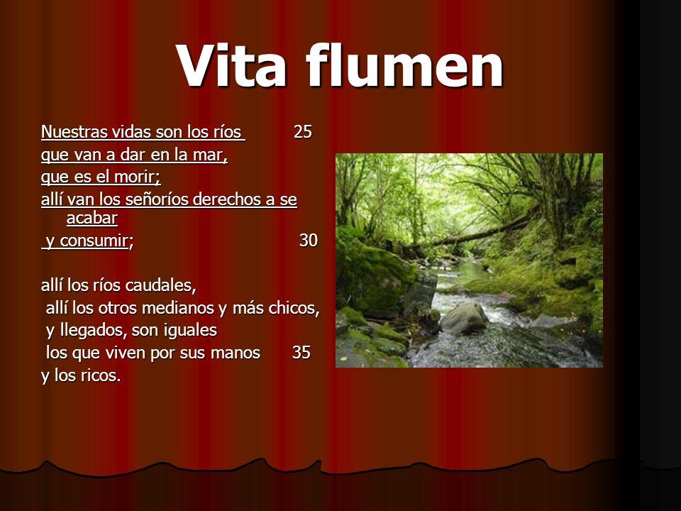 Vita flumen Nuestras vidas son los ríos 25 que van a dar en la mar,