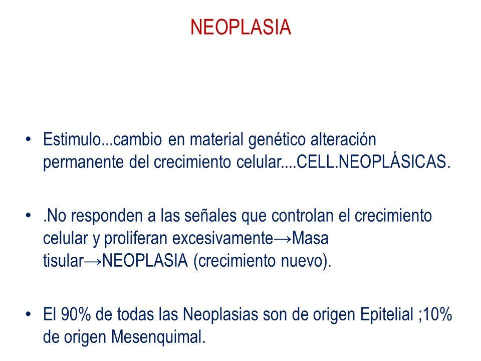 NEOPLASIA Respuesta adaptativa celular ..reversible.