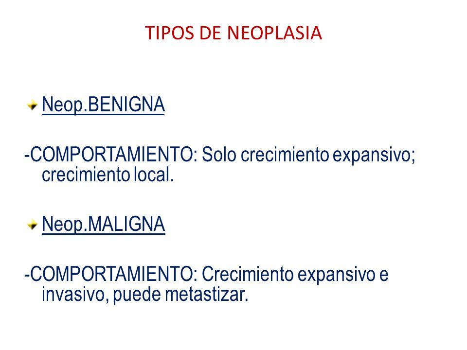 TIPOS DE NEOPLASIA Neop.BENIGNA. -COMPORTAMIENTO: Solo crecimiento expansivo; crecimiento local. Neop.MALIGNA.