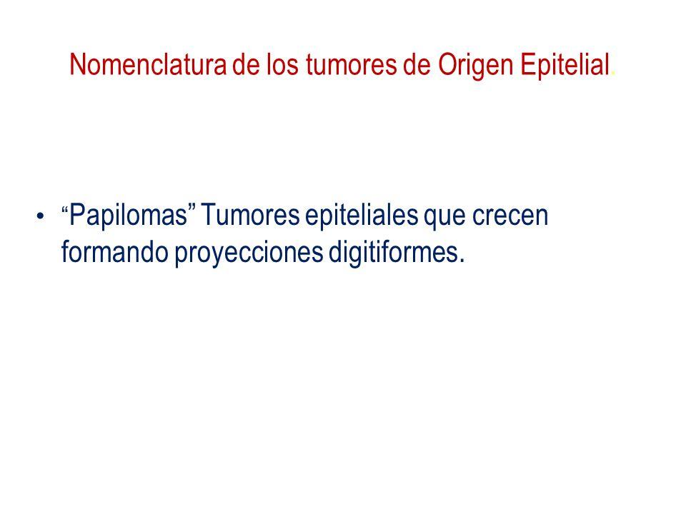 Nomenclatura de los tumores de Origen Epitelial.