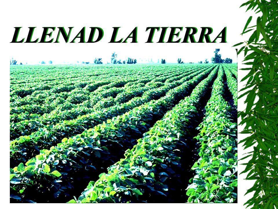 LLENAD LA TIERRA