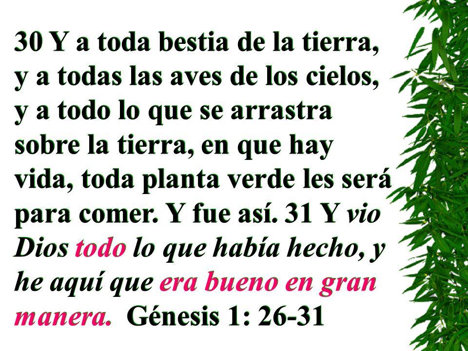 30 Y a toda bestia de la tierra, y a todas las aves de los cielos, y a todo lo que se arrastra sobre la tierra, en que hay vida, toda planta verde les será para comer.