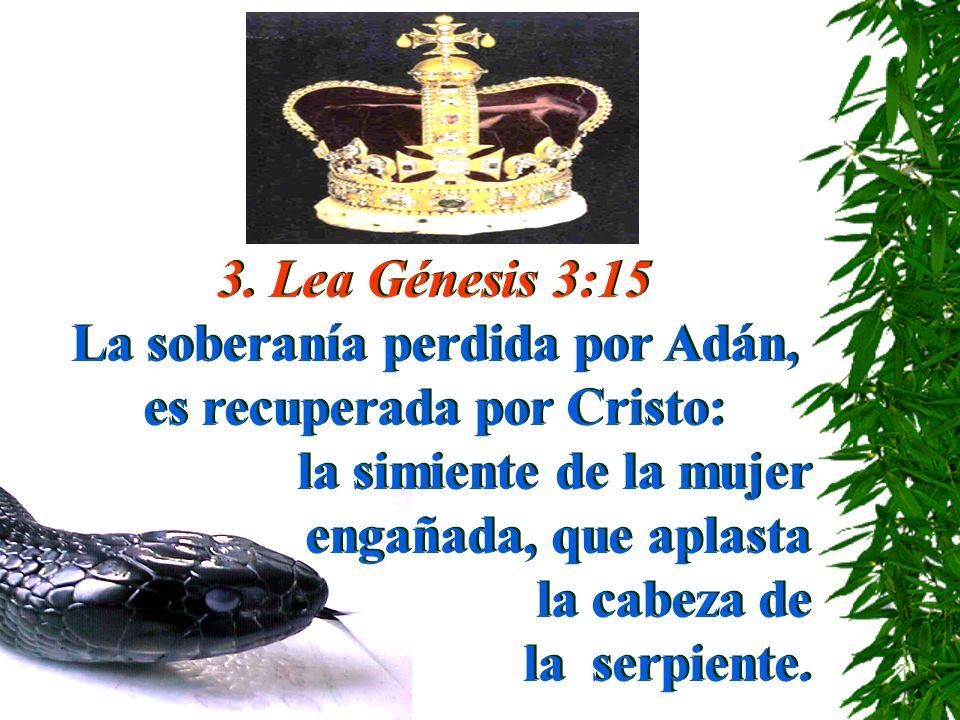 La soberanía perdida por Adán, es recuperada por Cristo:
