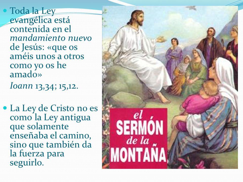 Toda la Ley evangélica está contenida en el mandamiento nuevo de Jesús: «que os améis unos a otros como yo os he amado»