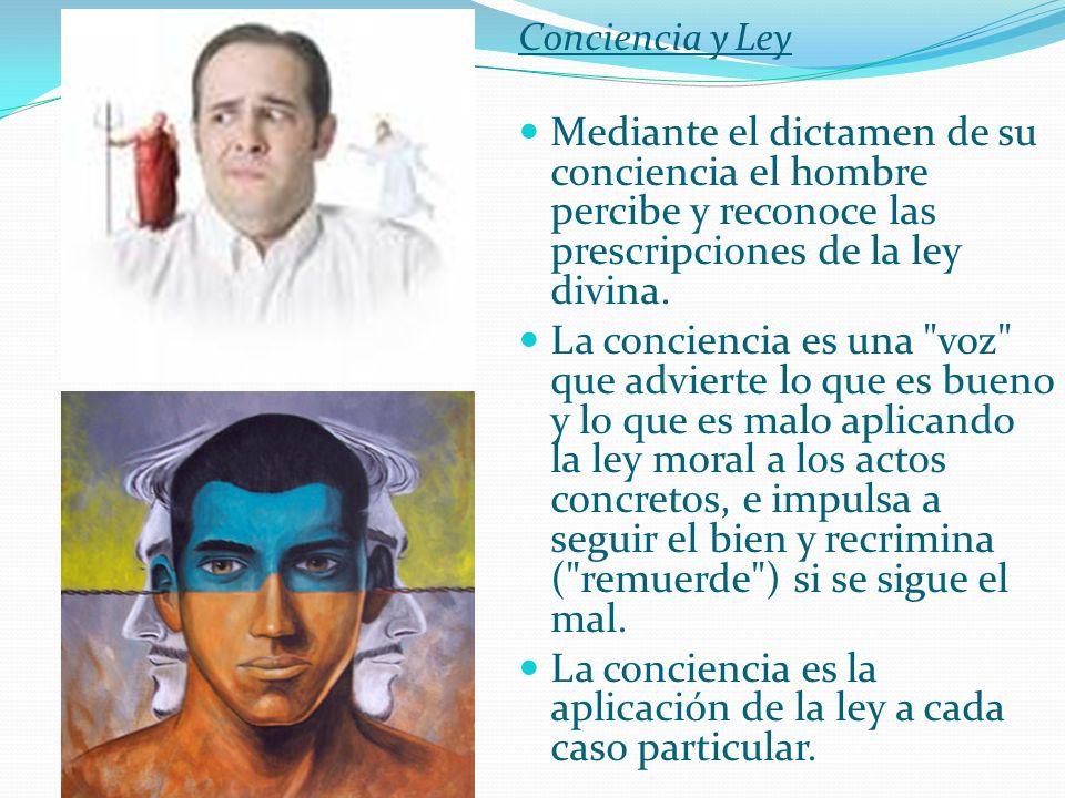 La conciencia es la aplicación de la ley a cada caso particular.