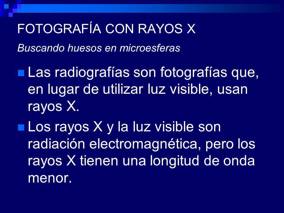 FOTOGRAFÍA CON RAYOS X Buscando huesos en microesferas