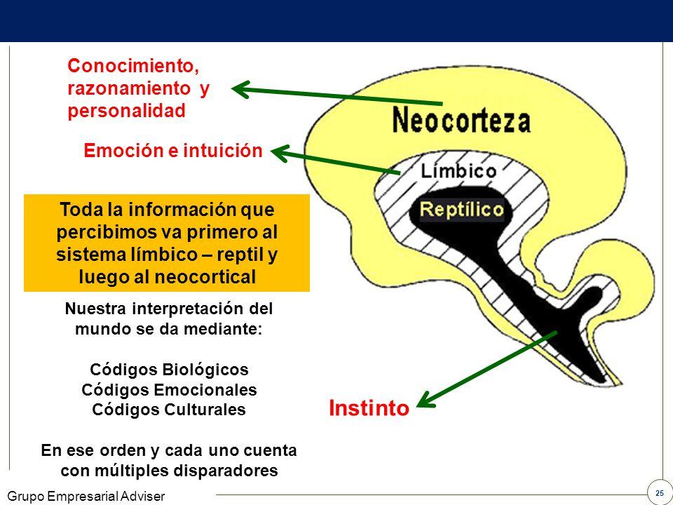 Instinto Conocimiento, razonamiento y personalidad Emoción e intuición