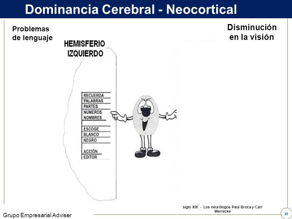 Dominancia Cerebral - Neocortical