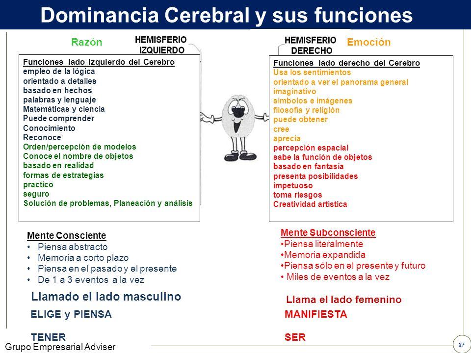 Dominancia Cerebral y sus funciones