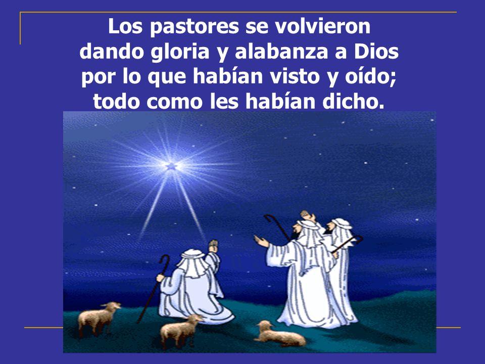 Los pastores se volvieron dando gloria y alabanza a Dios por lo que habían visto y oído; todo como les habían dicho.