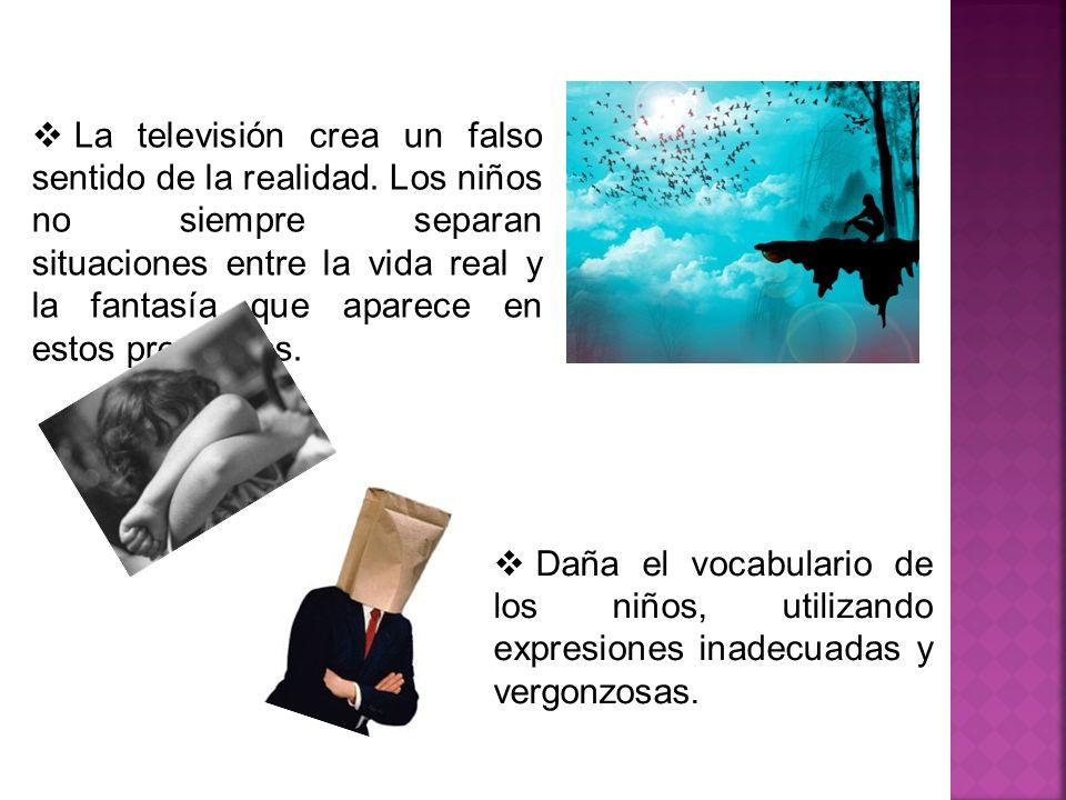 La televisión crea un falso sentido de la realidad