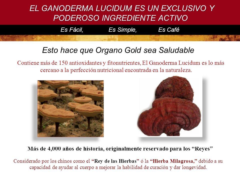 EL GANODERMA LUCIDUM ES UN EXCLUSIVO Y PODEROSO INGREDIENTE ACTIVO