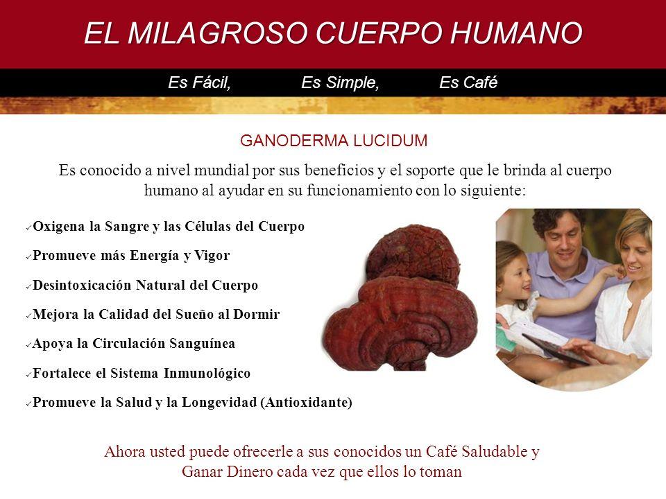 EL MILAGROSO CUERPO HUMANO