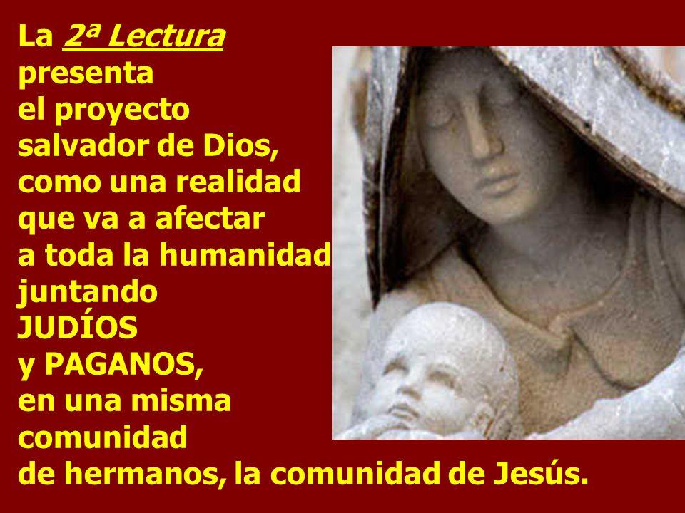 La 2ª Lectura presenta el proyecto salvador de Dios, como una realidad que va a afectar a toda la humanidad juntando JUDÍOS y PAGANOS, en una misma comunidad de hermanos, la comunidad de Jesús.