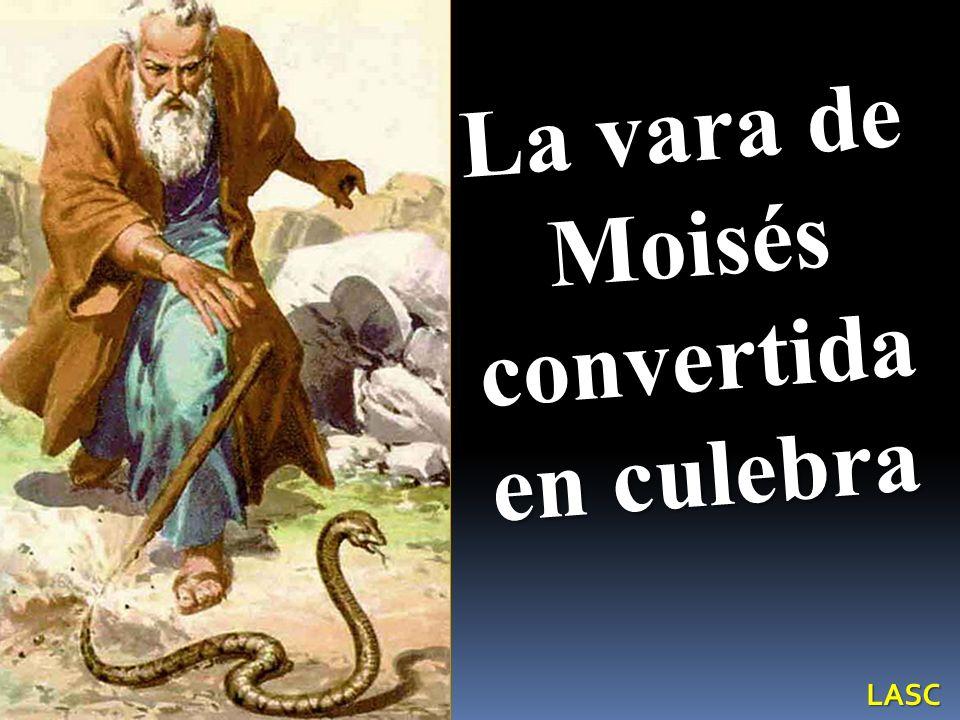 La vara de Moisés convertida en culebra