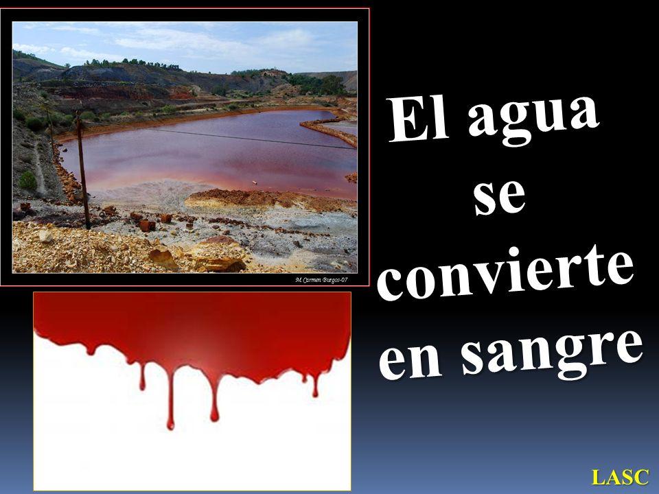 El agua se convierte en sangre