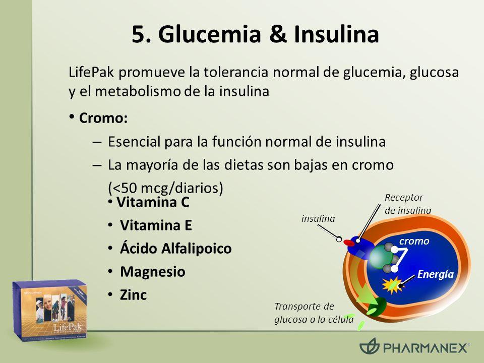 5. Glucemia & Insulina Cromo: