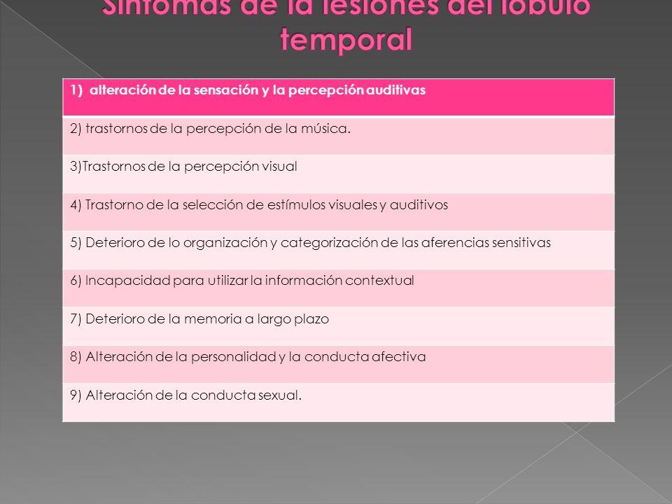 Síntomas de la lesiones del lóbulo temporal