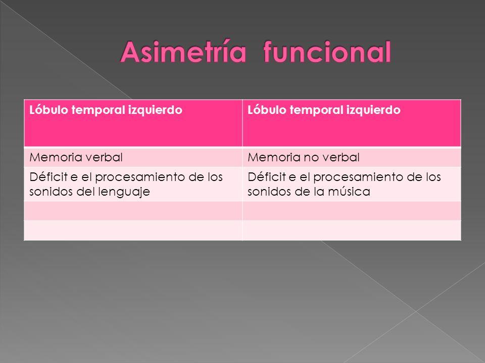 Asimetría funcional Lóbulo temporal izquierdo Memoria verbal