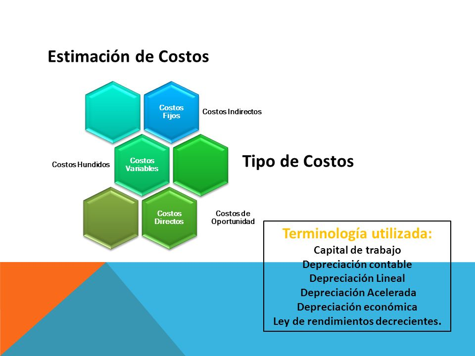 Estimación de Costos Tipo de Costos Terminología utilizada: