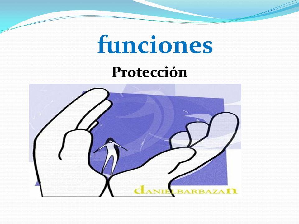 funciones Protección