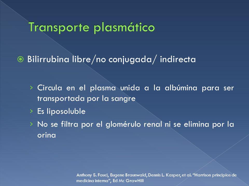 Transporte plasmático