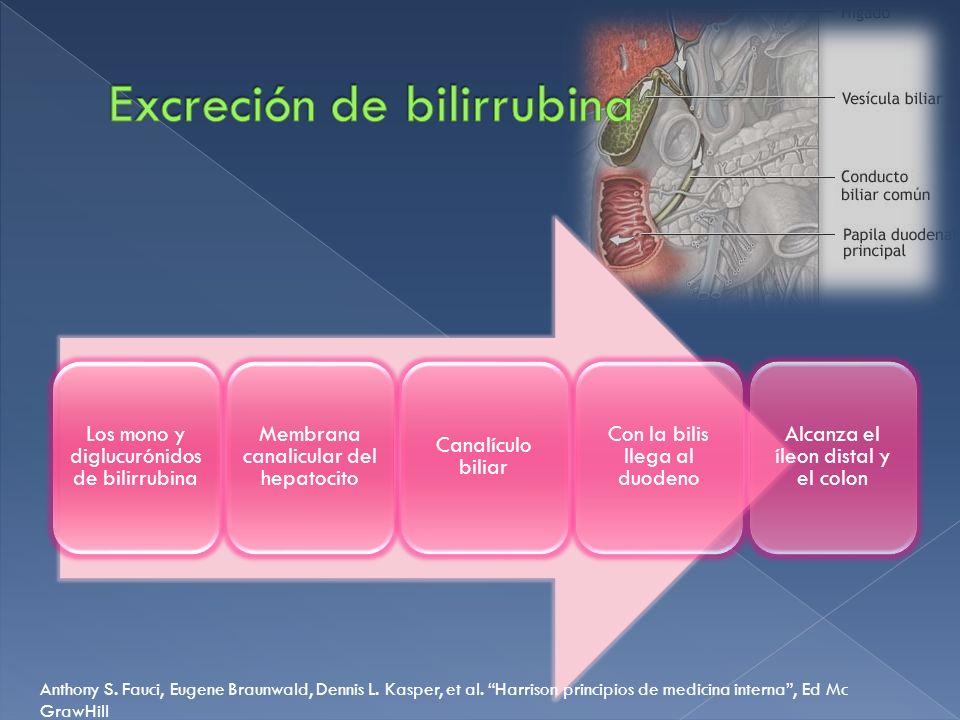 Excreción de bilirrubina