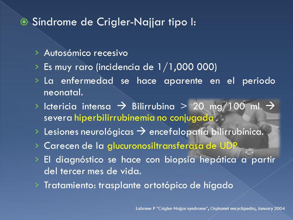 Síndrome de Crigler-Najjar tipo I: