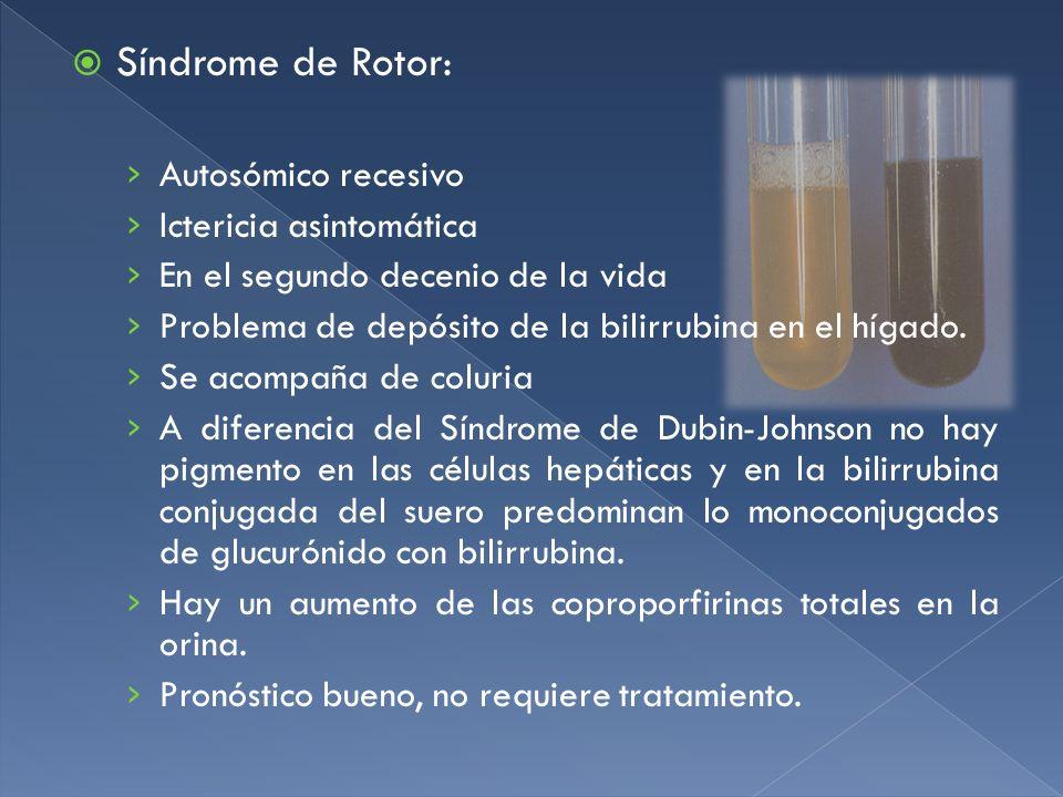 Síndrome de Rotor: Autosómico recesivo Ictericia asintomática