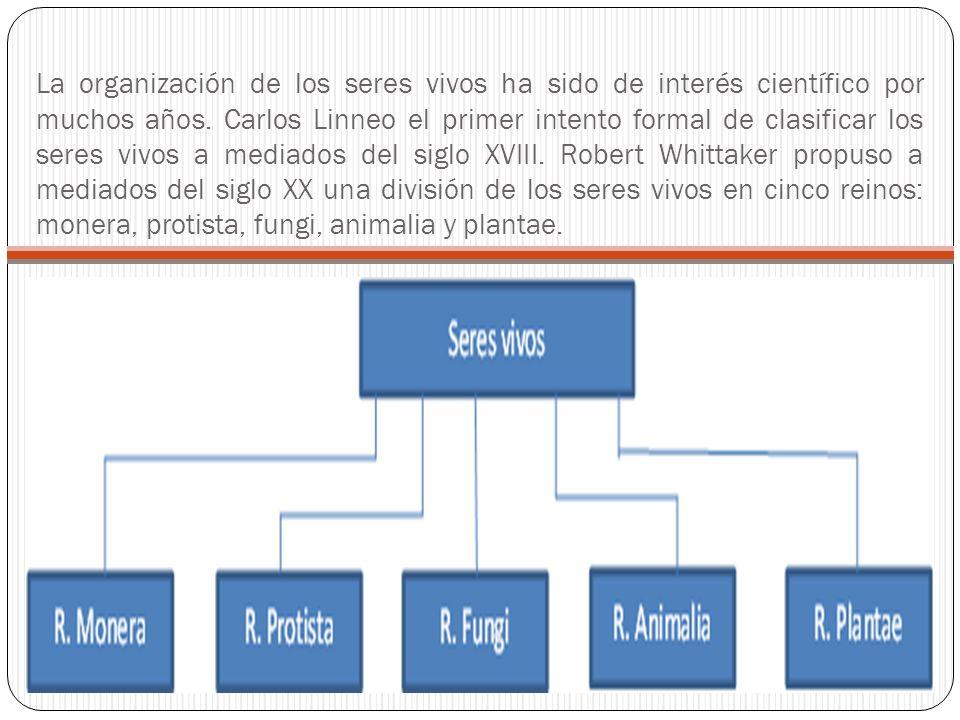 La organización de los seres vivos ha sido de interés científico por muchos años.