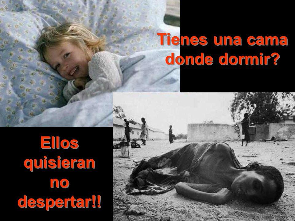 Tienes una cama donde dormir Ellos quisieran no despertar!!