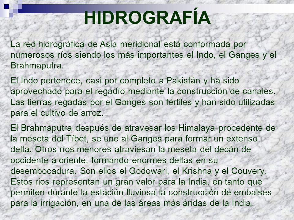 HIDROGRAFÍA La red hidrográfica de Asia meridional está conformada por numerosos ríos siendo los más importantes el Indo, el Ganges y el Brahmaputra.