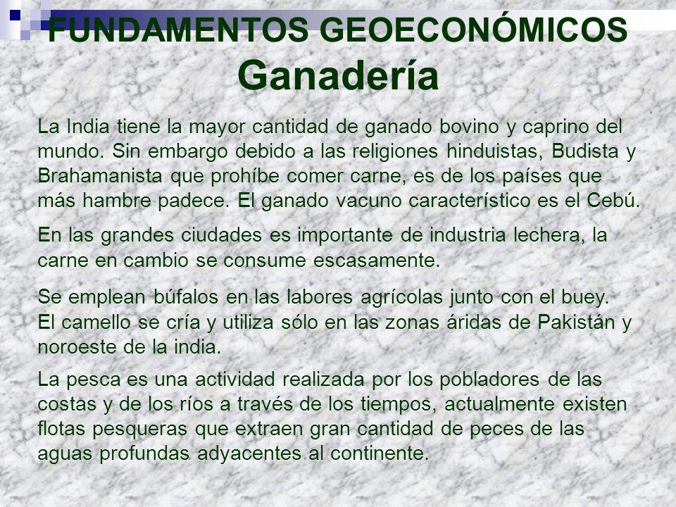FUNDAMENTOS GEOECONÓMICOS Ganadería