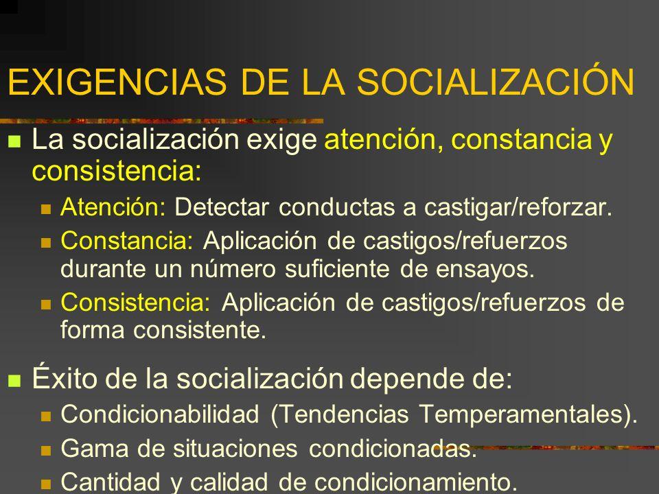 EXIGENCIAS DE LA SOCIALIZACIÓN